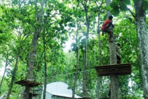 jasa pemasangan flying fox